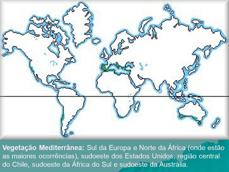 Vegetação Mediterrânea: Sul da Europa e Norte da África (onde estão as maiores ocorrências), sudoeste dos Estados Unidos, região central do Chile, sud