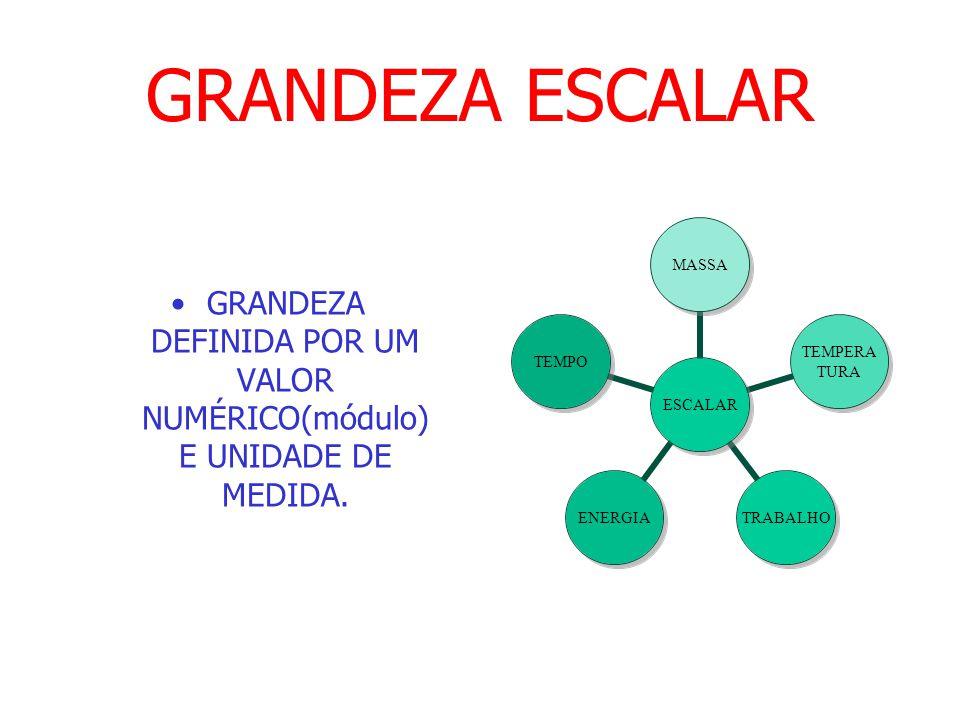 GRANDEZA ESCALAR GRANDEZA DEFINIDA POR UM VALOR NUMÉRICO(módulo) E UNIDADE DE MEDIDA.