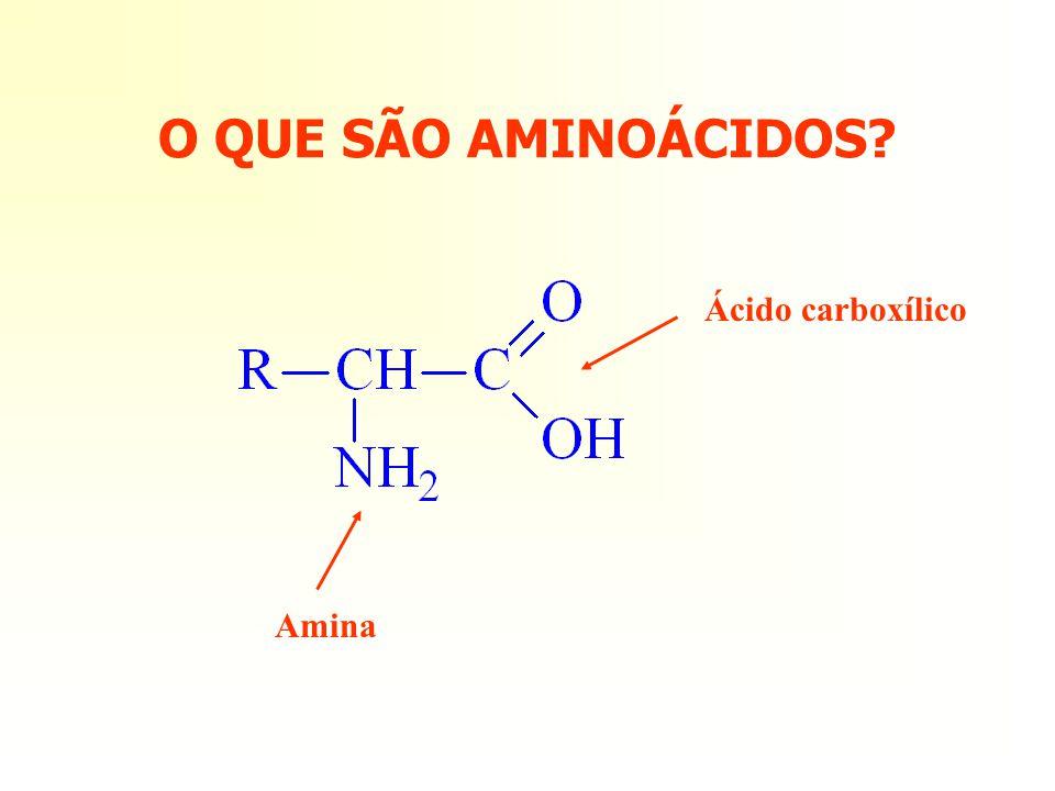 O QUE SÃO AMINOÁCIDOS? Ácido carboxílico Amina