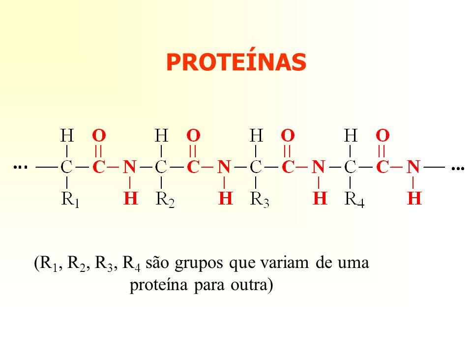 PROTEÍNAS (R 1, R 2, R 3, R 4 são grupos que variam de uma proteína para outra)
