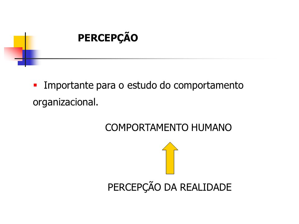 PERCEPÇÃO Importante para o estudo do comportamento organizacional. COMPORTAMENTO HUMANO PERCEPÇÃO DA REALIDADE