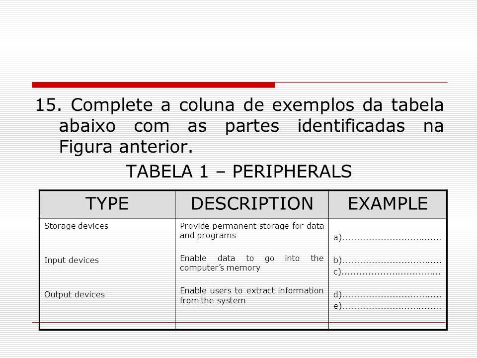 15. Complete a coluna de exemplos da tabela abaixo com as partes identificadas na Figura anterior. TABELA 1 – PERIPHERALS TYPEDESCRIPTIONEXAMPLE Stora