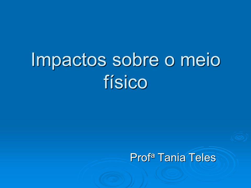 Impactos sobre o meio físico Prof a Tania Teles