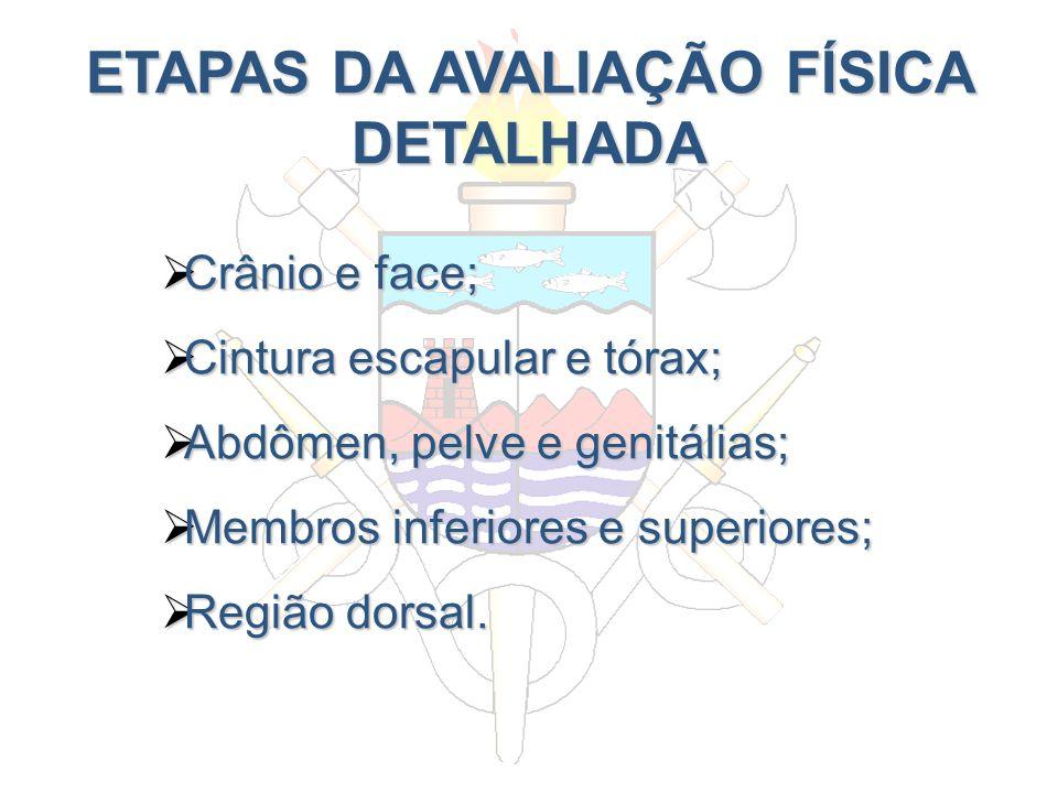 ETAPAS DA AVALIAÇÃO FÍSICA DETALHADA Crânio e face; Crânio e face; Cintura escapular e tórax; Cintura escapular e tórax; Abdômen, pelve e genitálias;