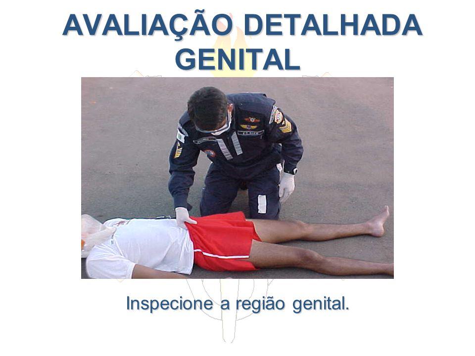 AVALIAÇÃO DETALHADA GENITAL AVALIAÇÃO DETALHADA GENITAL Inspecione a região genital.