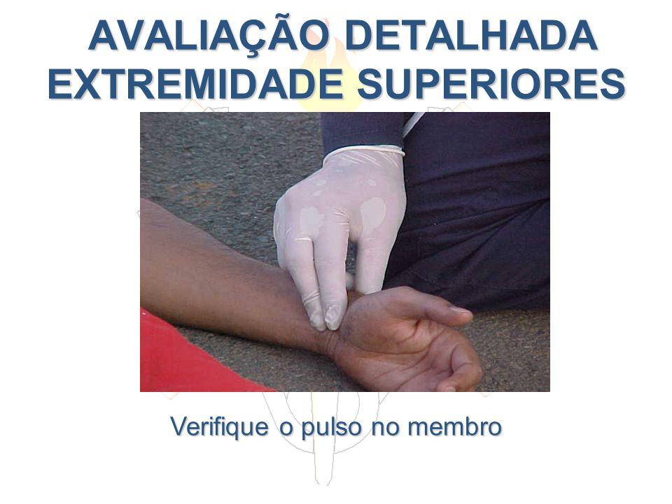 AVALIAÇÃO DETALHADA EXTREMIDADE SUPERIORES AVALIAÇÃO DETALHADA EXTREMIDADE SUPERIORES Verifique o pulso no membro