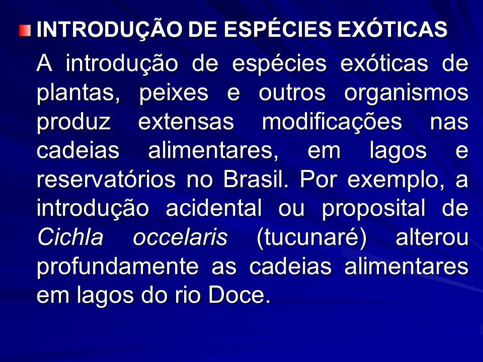 INTRODUÇÃO DE ESPÉCIES EXÓTICAS A introdução de espécies exóticas de plantas, peixes e outros organismos produz extensas modificações nas cadeias alim