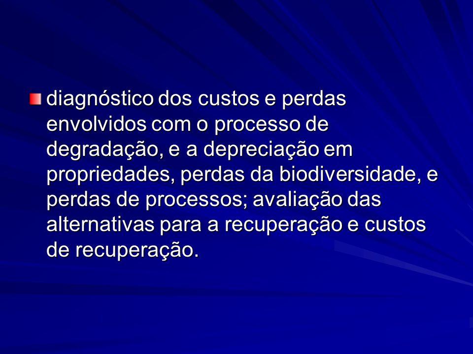 diagnóstico dos custos e perdas envolvidos com o processo de degradação, e a depreciação em propriedades, perdas da biodiversidade, e perdas de proces