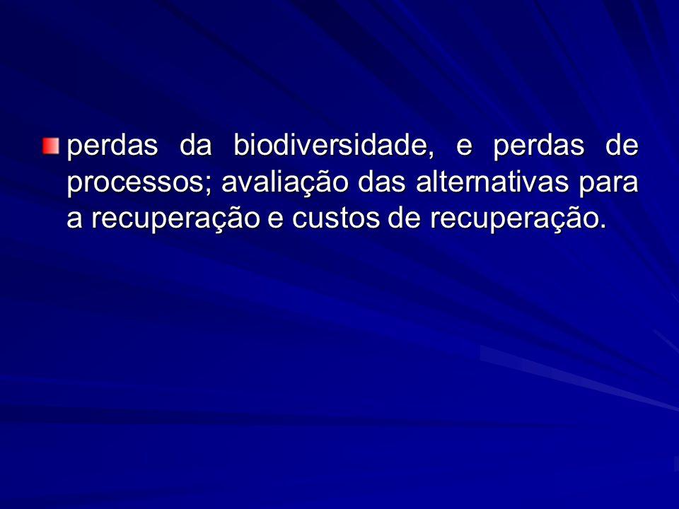 perdas da biodiversidade, e perdas de processos; avaliação das alternativas para a recuperação e custos de recuperação.