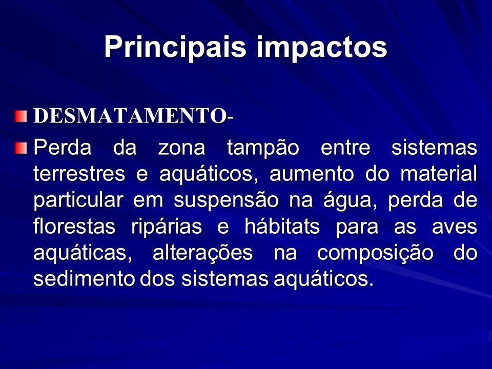 Principais impactos DESMATAMENTO- Perda da zona tampão entre sistemas terrestres e aquáticos, aumento do material particular em suspensão na água, per