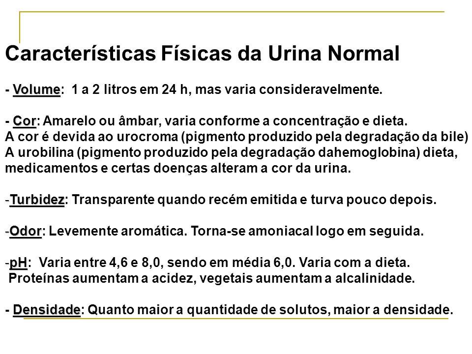 Características Físicas da Urina Normal Volume - Volume: 1 a 2 litros em 24 h, mas varia consideravelmente.