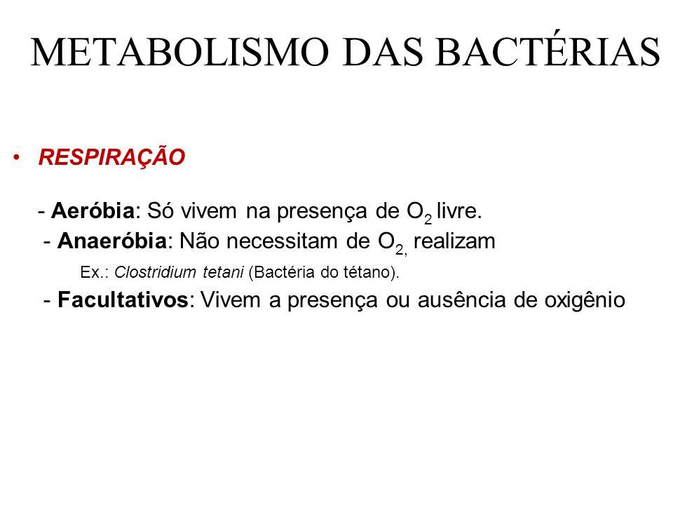METABOLISMO DAS BACTÉRIAS RESPIRAÇÃO - Aeróbia: Só vivem na presença de O 2 livre.