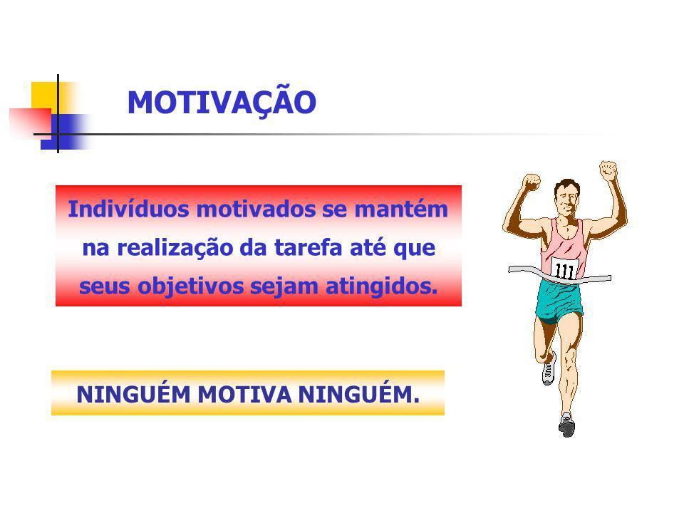 MOTIVAÇÃO Indivíduos motivados se mantém na realização da tarefa até que seus objetivos sejam atingidos.