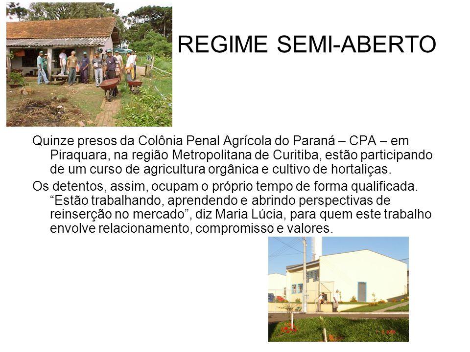REGIME SEMI-ABERTO Quinze presos da Colônia Penal Agrícola do Paraná – CPA – em Piraquara, na região Metropolitana de Curitiba, estão participando de um curso de agricultura orgânica e cultivo de hortaliças.