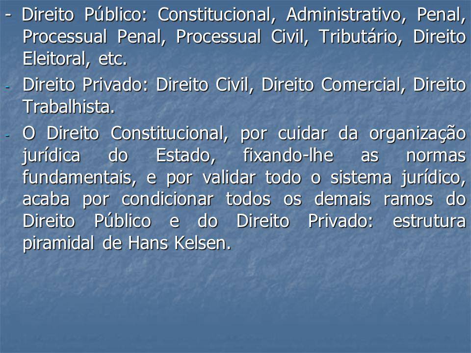 - Direito Público: Constitucional, Administrativo, Penal, Processual Penal, Processual Civil, Tributário, Direito Eleitoral, etc.