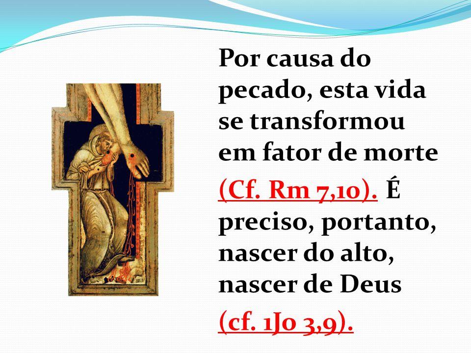 Por causa do pecado, esta vida se transformou em fator de morte (Cf. Rm 7,10). É preciso, portanto, nascer do alto, nascer de Deus (cf. 1Jo 3,9).