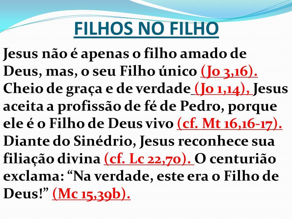 FILHOS NO FILHO Jesus não é apenas o filho amado de Deus, mas, o seu Filho único (Jo 3,16). Cheio de graça e de verdade (Jo 1,14), Jesus aceita a prof