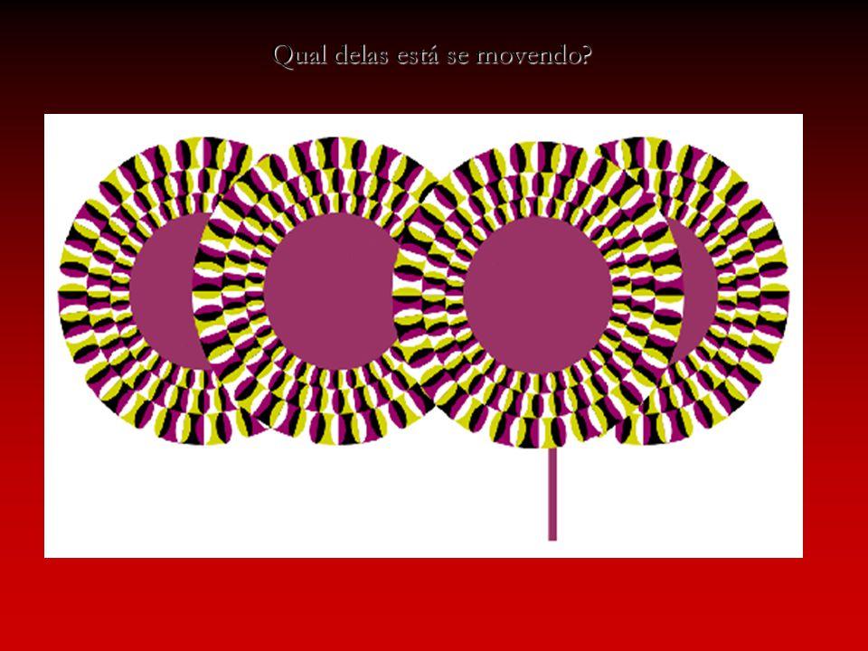 Transmissão do impulso nervoso: dentrito corpo celular axônio