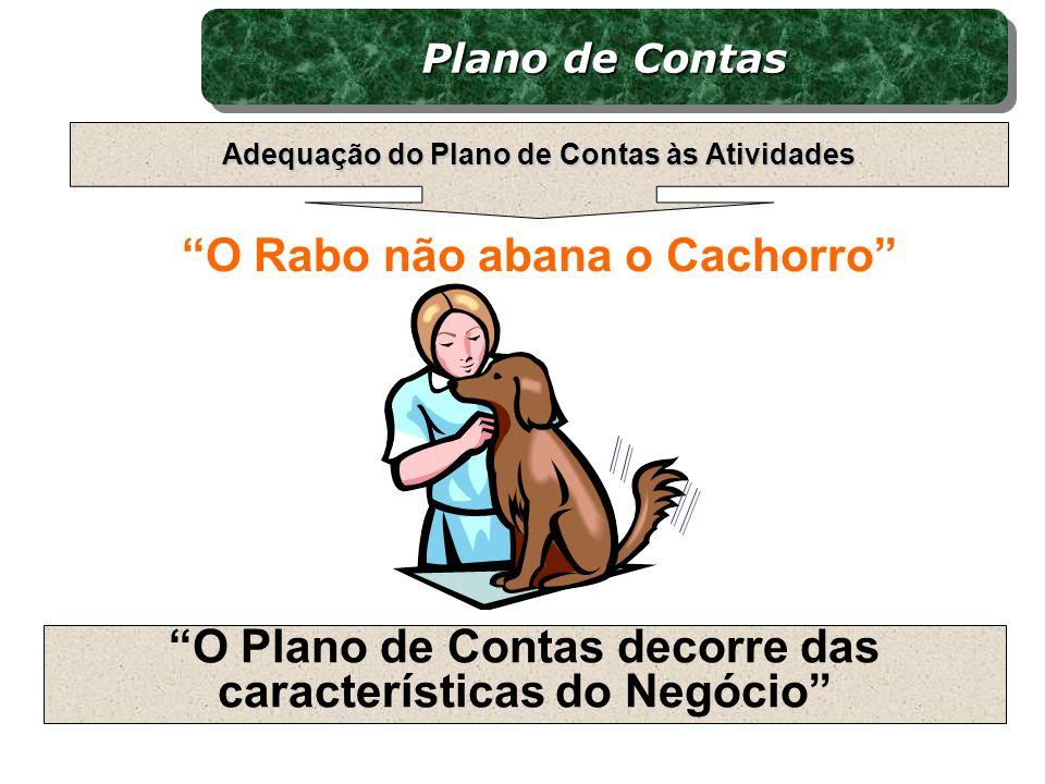 O Rabo não abana o Cachorro O Plano de Contas decorre das características do Negócio Plano de Contas Adequação do Plano de Contas às Atividades