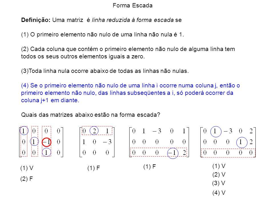 (1) V (1) F (1) V (2) F (2) V (3) V (4) V Forma Escada Definição: Uma matriz é linha reduzida à forma escada se (1) O primeiro elemento não nulo de um