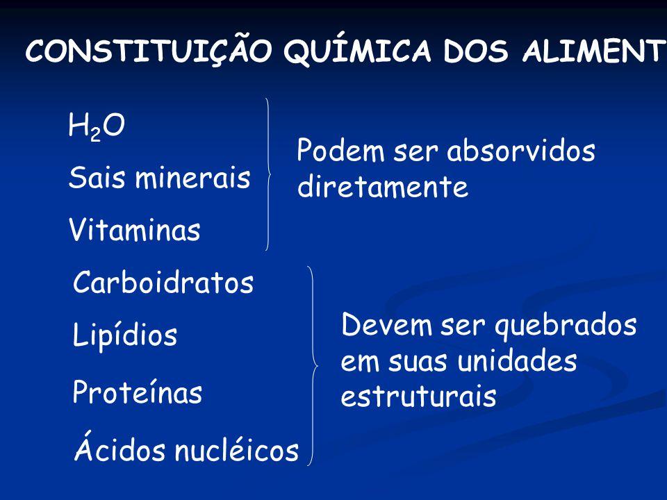ESTÔMAGO n O suco gástrico é um líquido claro, segregado em abundância por numerosas glândulas microscópicas disseminadas pela mucosa do estômago.