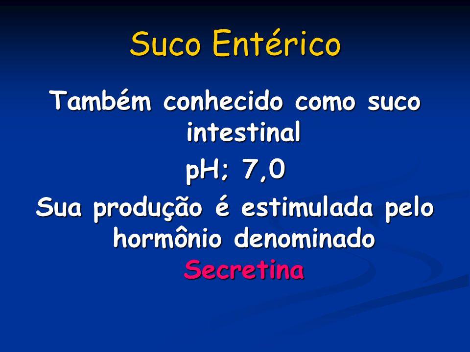Suco Entérico Também conhecido como suco intestinal pH; 7,0 Sua produção é estimulada pelo hormônio denominado Secretina