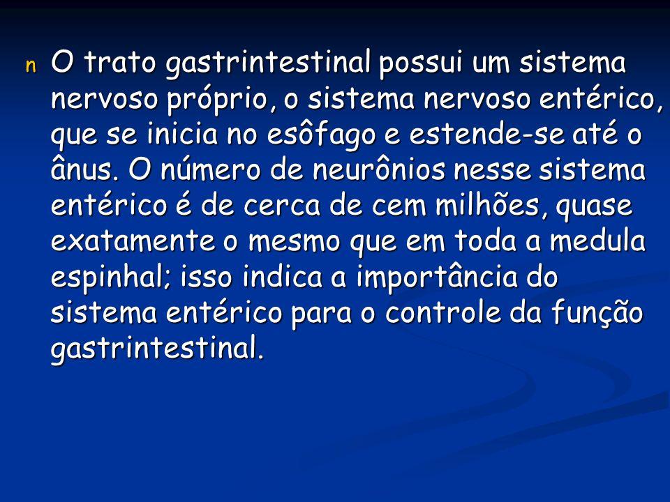n O trato gastrintestinal possui um sistema nervoso próprio, o sistema nervoso entérico, que se inicia no esôfago e estende-se até o ânus. O número de