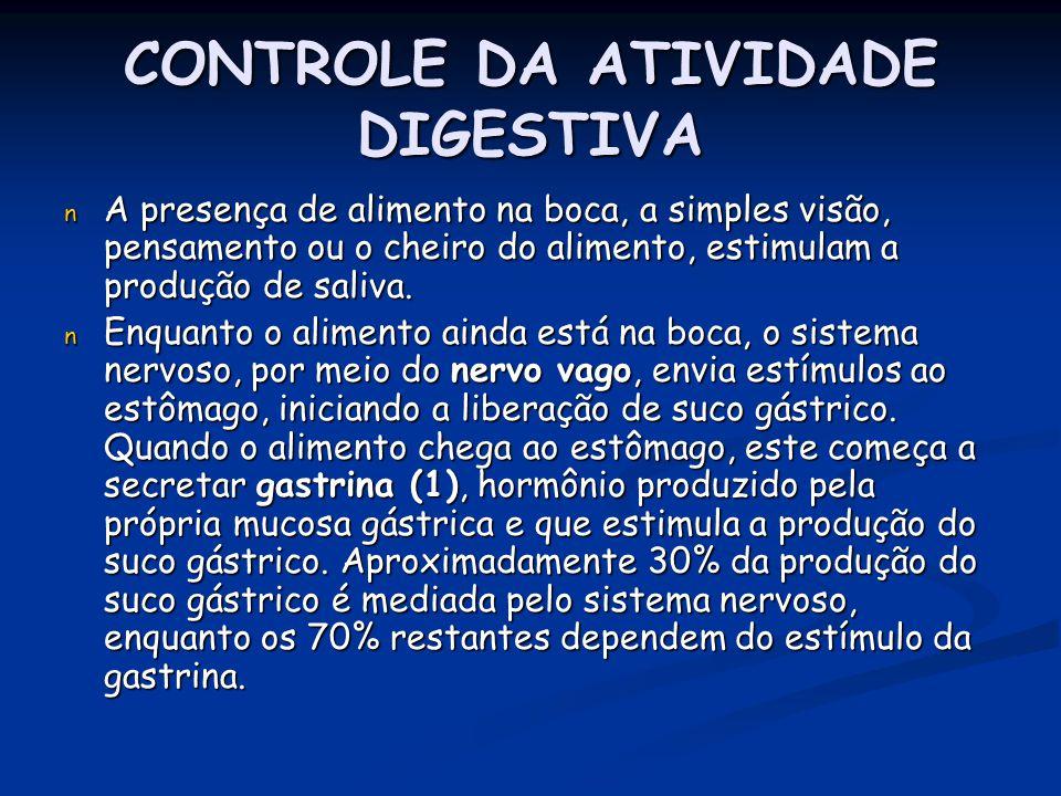 CONTROLE DA ATIVIDADE DIGESTIVA n A presença de alimento na boca, a simples visão, pensamento ou o cheiro do alimento, estimulam a produção de saliva.