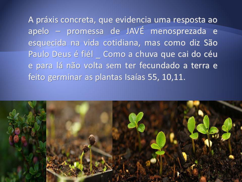 A práxis concreta, que evidencia uma resposta ao apelo – promessa de JAVÉ menosprezada e esquecida na vida cotidiana, mas como diz São Paulo Deus é fi