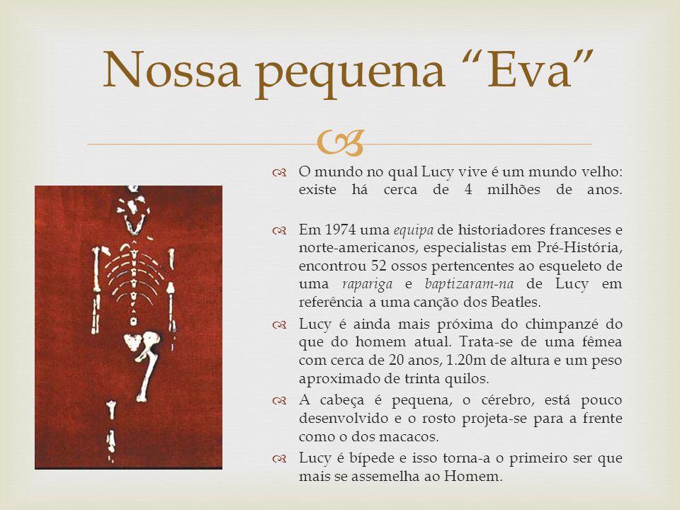 Nossa pequena Eva O mundo no qual Lucy vive é um mundo velho: existe há cerca de 4 milhões de anos.
