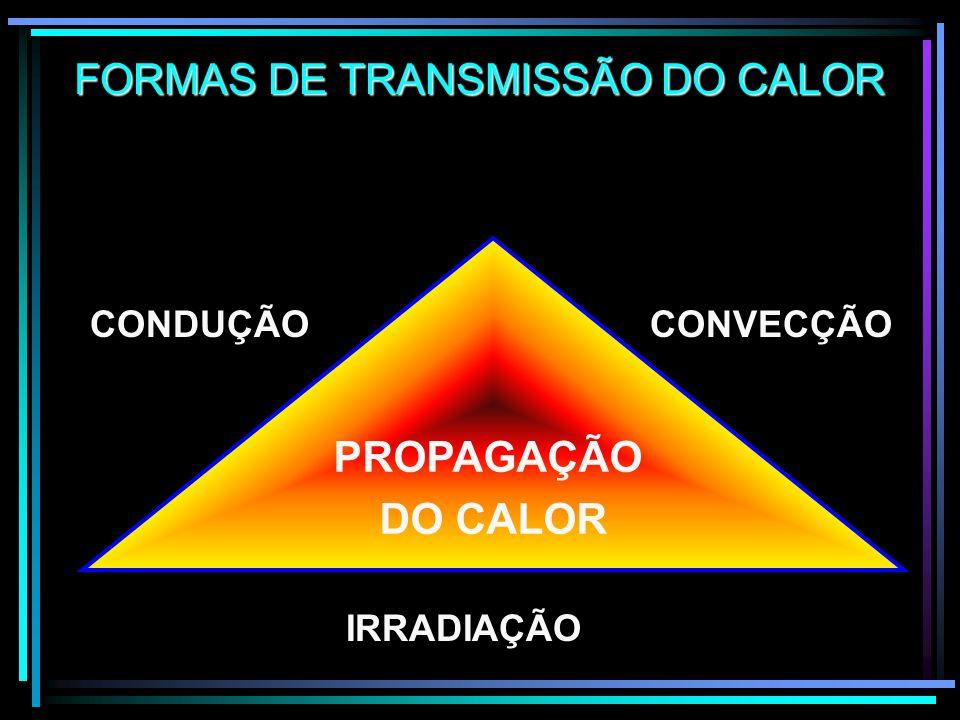 FISIOLÓGICO DESIDRATAÇÃO FADIGA PROBLEMAS RESPIRATÓRIOS INSOLAÇÃO