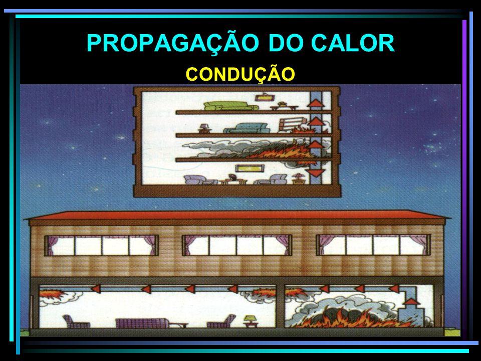 FORMAS DE TRANSMISSÃO DO CALOR PROPAGAÇÃO DO CALOR IRRADIAÇÃO CONDUÇÃOCONVECÇÃO