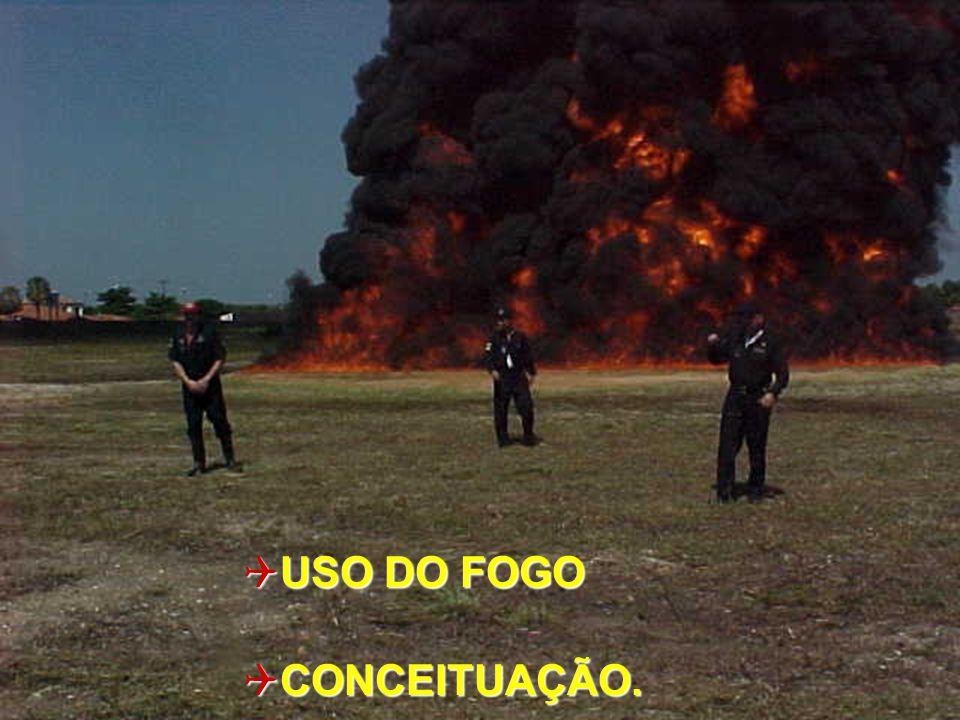 TEORIA CONTRA INCÊNDIO ROTEIRO: 1.INTRODUÇÃO 2. COMBUSTÃO FOGO 3.