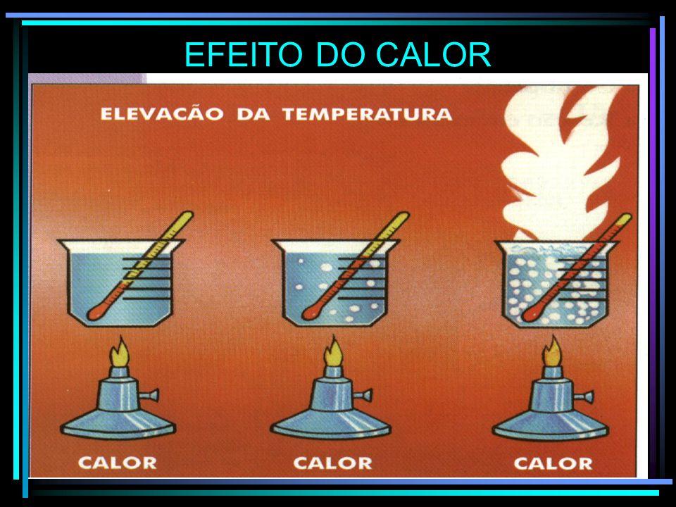 EFEITO DO CALOR