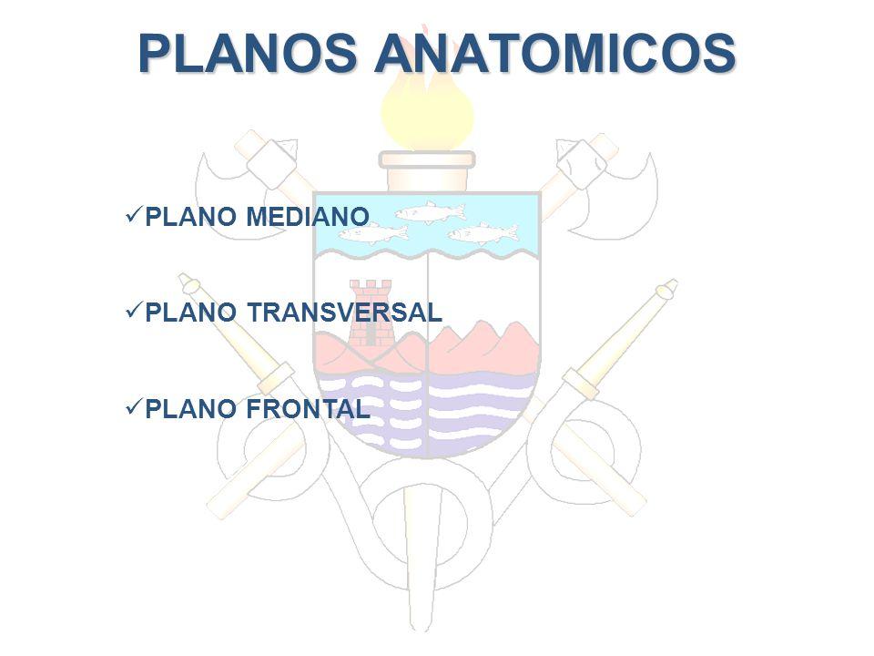 PLANOS ANATOMICOS PLANO MEDIANO PLANO TRANSVERSAL PLANO FRONTAL