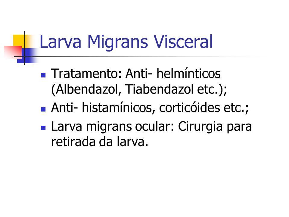 Larva Migrans Visceral Tratamento: Anti- helmínticos (Albendazol, Tiabendazol etc.); Anti- histamínicos, corticóides etc.; Larva migrans ocular: Cirurgia para retirada da larva.
