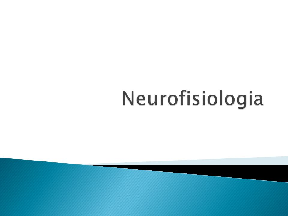 Corpo Centro de controle (Coordenação) O Sistema nervoso O Sistema endócrino Funções do Sistema Nervoso: .