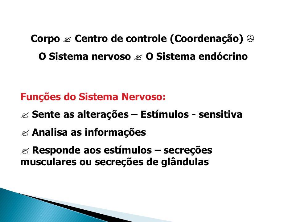 Corpo Centro de controle (Coordenação) O Sistema nervoso O Sistema endócrino Funções do Sistema Nervoso: ? Sente as alterações – Estímulos - sensitiva