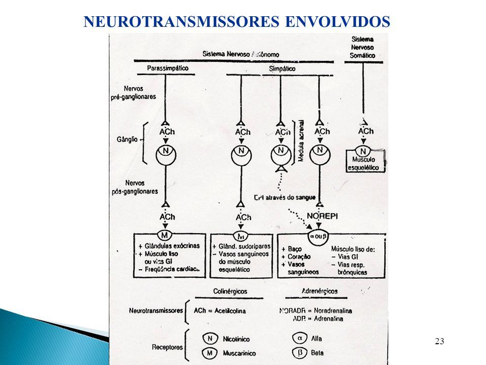 23 NEUROTRANSMISSORES ENVOLVIDOS