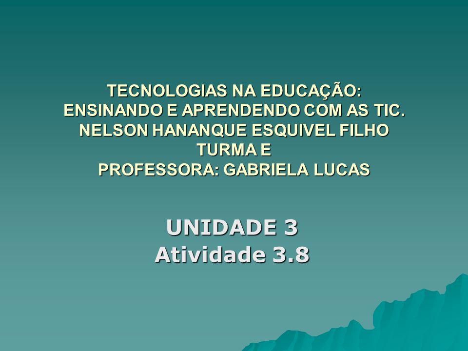 TECNOLOGIAS NA EDUCAÇÃO: ENSINANDO E APRENDENDO COM AS TIC. NELSON HANANQUE ESQUIVEL FILHO TURMA E PROFESSORA: GABRIELA LUCAS UNIDADE 3 Atividade 3.8