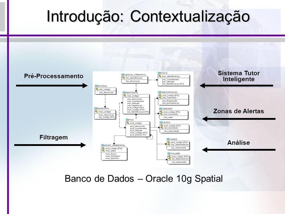 Introdução: Contextualização Banco de Dados – Oracle 10g Spatial Pré-Processamento Filtragem Sistema Tutor Inteligente Zonas de Alertas Análise