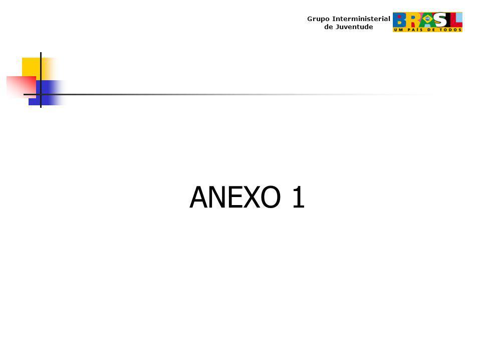 Grupo Interministerial de Juventude ANEXO 1