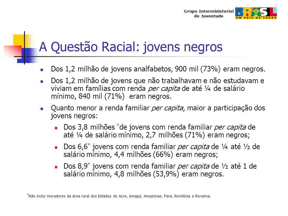 Grupo Interministerial de Juventude A Questão Racial: jovens negros Dos 1,2 milhão de jovens analfabetos, 900 mil (73%) eram negros. Dos 1,2 milhão de