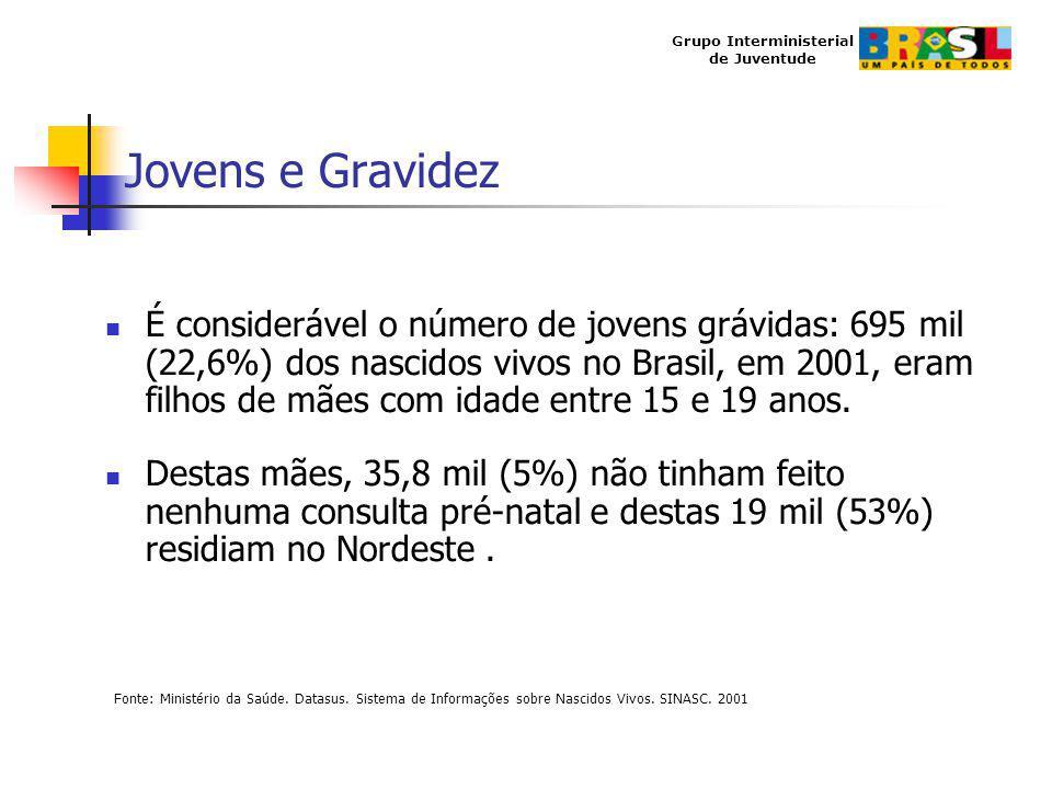 Grupo Interministerial de Juventude Jovens e Gravidez É considerável o número de jovens grávidas: 695 mil (22,6%) dos nascidos vivos no Brasil, em 200