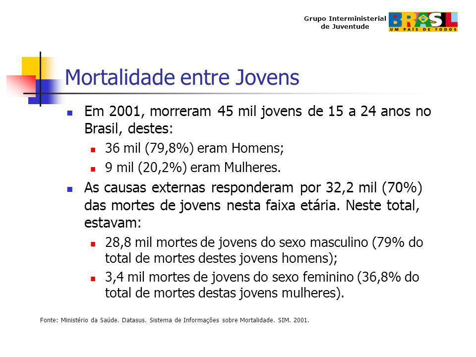 Grupo Interministerial de Juventude Mortalidade entre Jovens Em 2001, morreram 45 mil jovens de 15 a 24 anos no Brasil, destes: 36 mil (79,8%) eram Ho