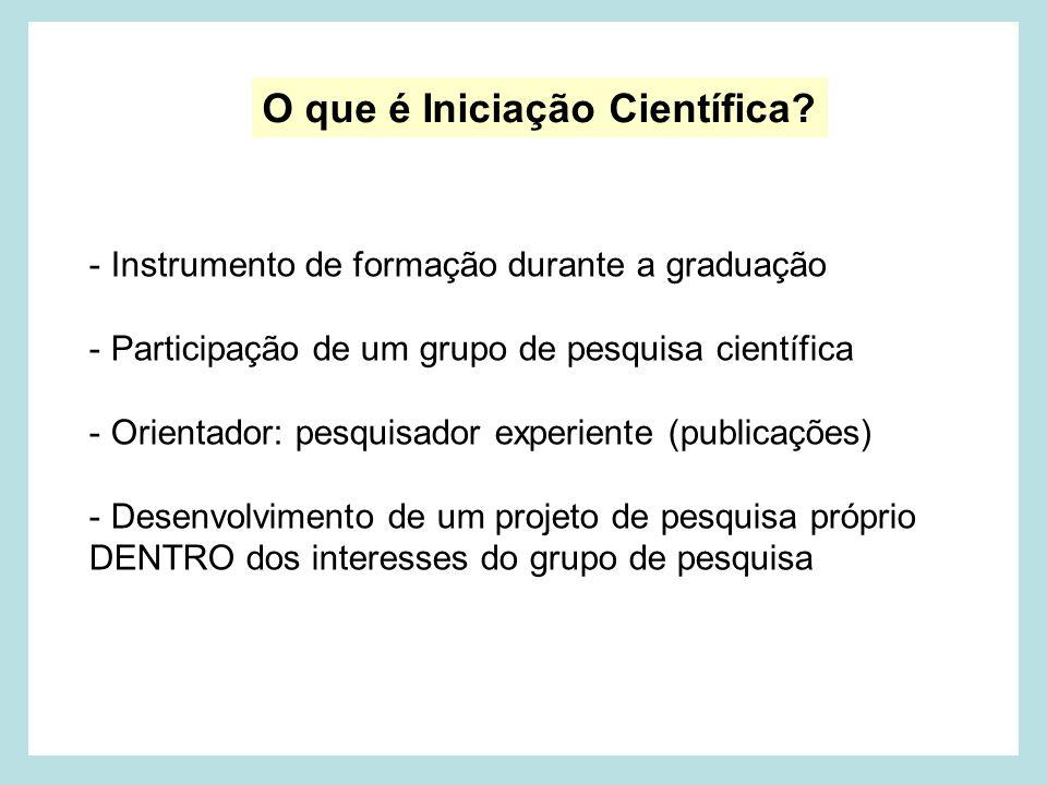 O que é Iniciação Científica.