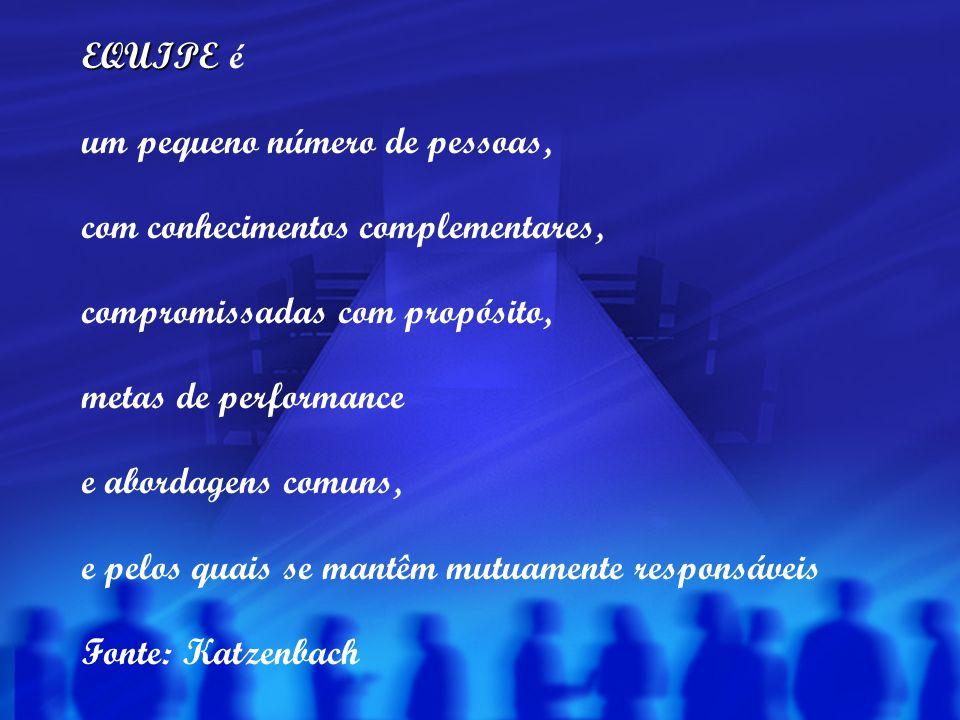 EQUIPE EQUIPE é um pequeno número de pessoas, com conhecimentos complementares, compromissadas com propósito, metas de performance e abordagens comuns