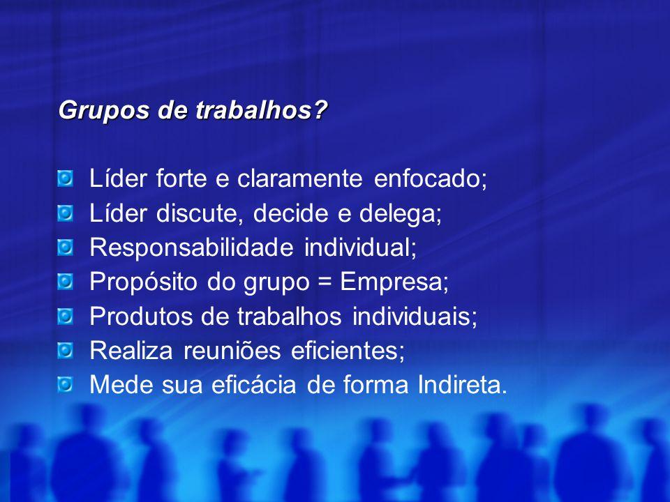 Grupos de trabalhos? Grupos de trabalhos? Líder forte e claramente enfocado; Líder discute, decide e delega; Responsabilidade individual; Propósito do