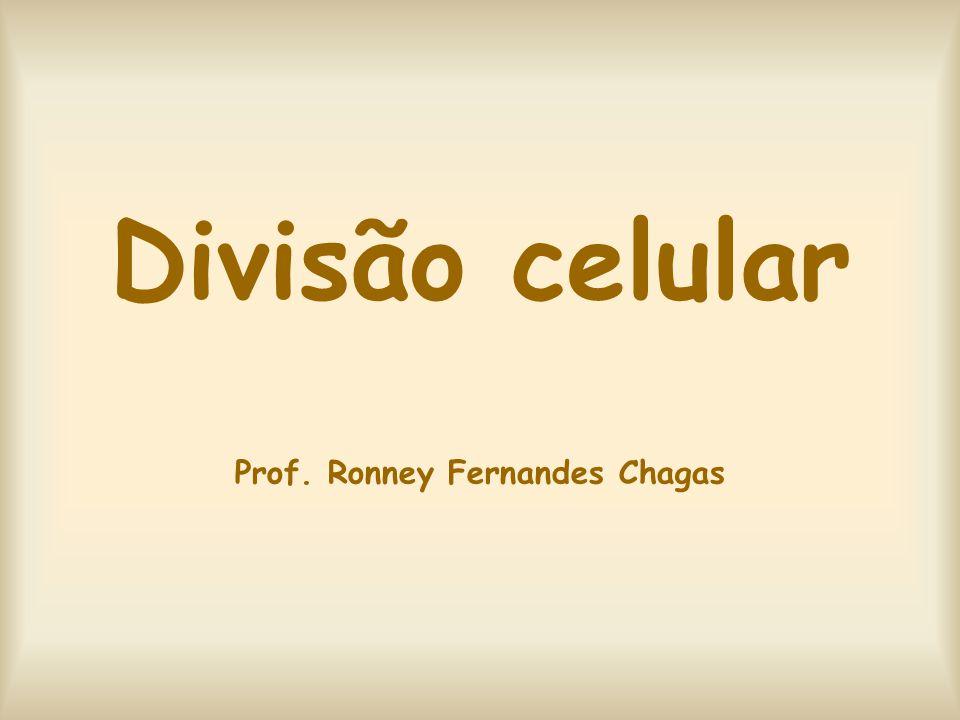 Divisão celular Prof. Ronney Fernandes Chagas