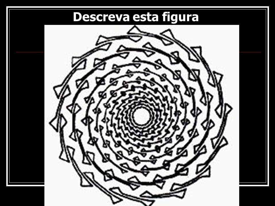 Rogério Flores Descreva esta figura